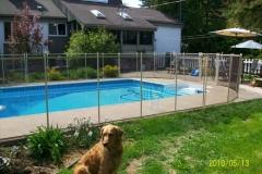 Clôture de piscine amovible | Pool Guard | Removable pool fence | photo57
